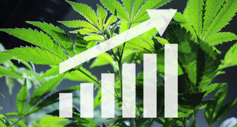 Bewegung im Cannabis Aktien Markt