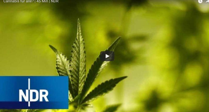 Cannabis für alle? Dokumentation