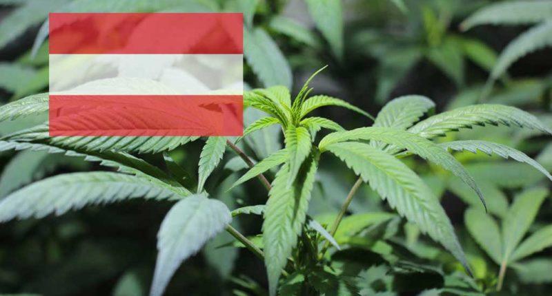 Ist Cannabis in Österreich legal?