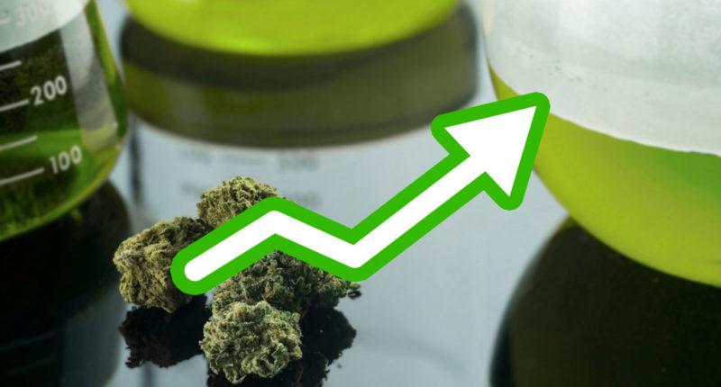 In Deutschland gibt es immer mehr Cannabis auf Rezept
