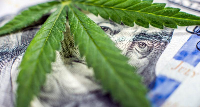 mehr Steuereinnahmen durch Cannabis Legalisierung