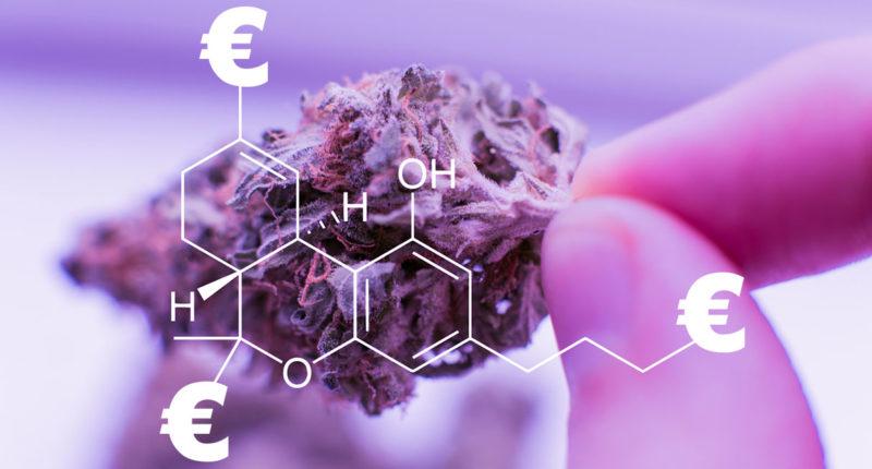 Studien: Mehr Steuern durch Cannabis Freigabe