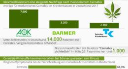 Infografik medizinisches Cannabis in Deutschland
