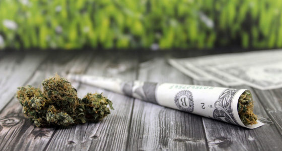 Cannabis Steuereinnahmen in den USA auf Rekordhoch
