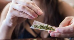 WHO Neubewertung Cannabis Risiken